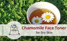 Natural chamomile tea toner for dry skin prepared in a right way can promote skin rejuvenation and whitening, reduce any inflammation, restores normal skin moisture.