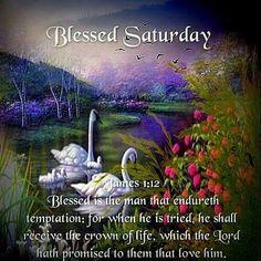 Blessed Saturday .