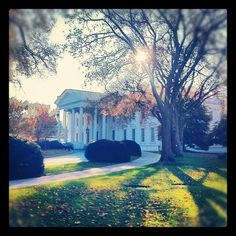 An early morning view of the White House from the grounds. #PoliticalAnimals (Taken with Instagram at Washington, DC)