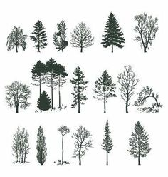 Tree silhouette collection vector 375478 - by nezabarom on VectorStock® - Tattoos - Cute Tattoos, New Tattoos, Small Tattoos, Tatoos, Flash Tattoos, Pretty Tattoos, Forest Tattoos, Nature Tattoos, Small Nature Tattoo