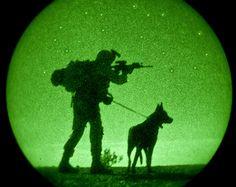 belgian malinois military dogs - Too cool Military Working Dogs, Military Dogs, Police Dogs, Military Police, Military Service, War Dogs, Belgian Malinois, German Shepherd Dogs, German Shepherds