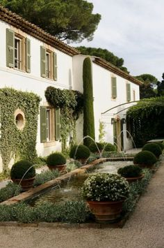 Provencal garden design- Love the formality, manicured, but still soft, & lush. I like the wall greenery.