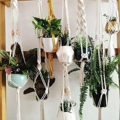 """524 Likes, 16 Comments - Mary ☀️ (@thisthriftedabode) on Instagram: """"So excited to attend my first plant hanger workshop taught by the talented @robyn.parker at…"""""""