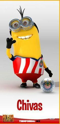 Minion liga mx Chivas.... Mi vidoooo