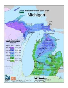 Plant hardiness map info, including a link to the site that will tell you your zone by ZIP code. I always thought I was a zone 5 girl, but guess what? 6b!