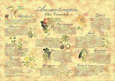 Poster Aromaterapia/Óleos Carreadores - formato A3 - papel couchê 210gr