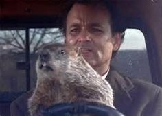 Autism Makes Every Day Groundhog Day