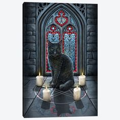 Rise Of The Witches Canvas Art Print by Lisa Parker | iCanvas Circle Canvas, Canvas Frame, Canvas Wall Art, Canvas Artwork, Canvas Art Prints, Lisa Parker, Black Cat Art, Canvas Painting Landscape, Cat Posters