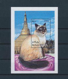 LE85492 Maldives  pets animals fauna cats good sheet MNH