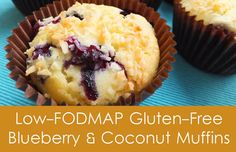 Blueberry Coconut muffins (low fodmap recipe).