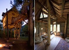 "Buy Flowers Online Same Day Delivery Crystal River Tree house: David Rasmussen structured and manufactured this ""treehouse"" with log segments as the principle bolster, since the trees on the property are not sufficiently able to help it. Cabana, Adult Tree House, Building A Treehouse, Treehouse Living, Treehouse Ideas, Cool Tree Houses, Amazing Houses, Tree House Designs, Unique Trees"