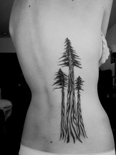 tallest tree tattoo, love this.
