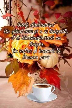 Good Morning, Alice, Autumn, Google, Bom Dia, Sunday Pictures, Buen Dia, Bonjour, Fall Season