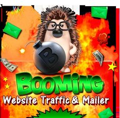 Booming Website Traffic