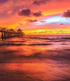 Double tap if you love Florida  Click bio link to access private rates. http://ift.tt/2jrLRuz . & Tap that follow button :)  . . @Floridadotcom @Floridadotcom @Floridadotcom . . .  @killahwAve dude