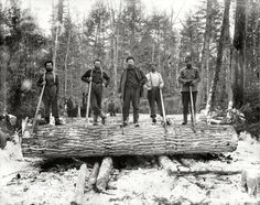 "Upper Michigan circa ""The loggers."" (via Shorpy Historical Photo Archive :: I'm a Lumberjack: Shorpy Historical Photos, Northern Michigan, Canada, Vintage Pictures, Vintage Images, Vintage Photographs, Canvas Art Prints, Old Photos, American History"
