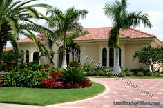 Planting ideas for circular drive ways. Circle driveway landscaping, design, pictures, and ideas. Tropical Backyard Landscaping, Palm Trees Landscaping, Florida Landscaping, Driveway Landscaping, Modern Landscaping, Outdoor Landscaping, Landscaping With Rocks, Landscaping Ideas, Driveway Ideas