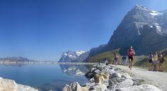 Jungfrau Marathon | Sarah's Blog of Running