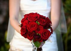 Cloud Nine Wedding Officiants for all your wedding event needs! 1-855-485-2447 toll free call us to schedule an appointment.