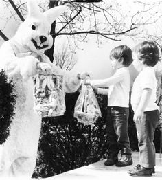 Umm... thanks giant rabbit.