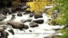 Beethoven - Silencio, via YouTube.