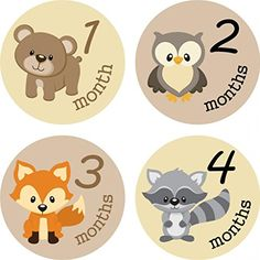 Little LillyBug Designs - Monthly Baby Stickers - Neutral - Woodland Critters - 1-12 Months Little LillyBug Designs http://www.amazon.com/dp/B00OKWF4VO/ref=cm_sw_r_pi_dp_b.dSub0J4XP8A