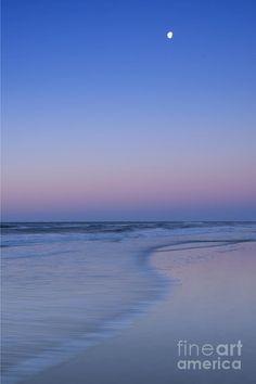 ✯ Pastel Tide