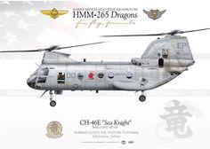 """CH-46E HMM-265 """"Dragons""""JP-2010"""