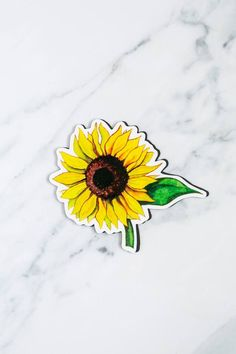 The fun beauty of the sunflower is very well known all the way around the world. #windowfilmworld #windowfilm #screendoormagnet #homedecor Film World, Screen Material, Special Flowers, Window Film, Color Splash, The Help, Magnets, Around The Worlds, Fun