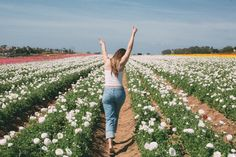 Summer. ☁  Source:sydneynoellephoto