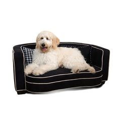 Really nice dog sofa. Daisy just let sis share the sofas we already have, lol.  Deco Bed Black, $185, now featured on Fab.
