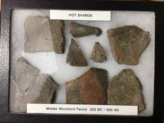 Ancient NDIAN POTTERY SHARDS with display case FROM Missouri