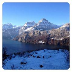 #schnee #morschach #vierwaldstättersee #rütli #seelisberg #igersschwiiz #switzerland #suisse #igersswitzerland #fu_swiss #fu_switzerland #jphotooftheday #igerssuisse #instaswiss #bestnatureshots   (hier: Morschach)   #igersswitzerland#vierwaldstättersee#morschach#suisse#schnee#fu_switzerland