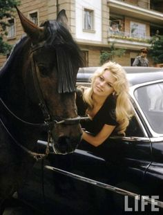 """I gave my beauty and my youth to men. I am going to give my wisdom and experience to animals"" (Brigitte Bardot). Me too."