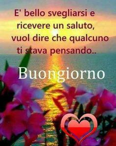 Buongiorno , buon mercoledi Italian Memes, Italian Quotes, Romantic Good Morning Messages, Good Morning Quotes, Italian Greetings, Italian Phrases, Italian Language, Day For Night, New Years Eve Party