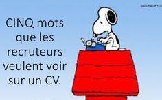 5 mots que les recruteurs veulent voir sur son CV | Blogue de Mylène Beaudoin