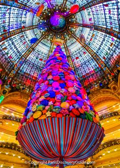 A giant candy tree floats from Galeries Lafayette's domed ceiling Rustic Outfits, Dome Ceiling, Giant Candy, Christmas Window Display, Christmas In Paris, Pretty Blue Eyes, Healthy Dog Treats, Windows, Stained Glass