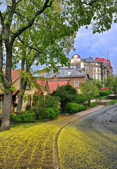 Yellow Spring Road in Turku Finland Beautiful Roads, Beautiful Places To Travel, Helsinki, Finland Summer, Turku Finland, Scandinavian Countries, Yellow Brick Road, Southern Europe, Cities In Europe