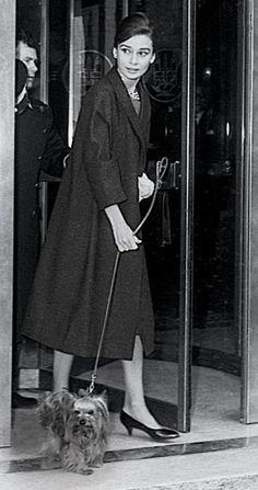 Audrey Hepburn, 1960, coat: Balenciaga, dress: Givenchy, shoes: René Mancini. @Carolyn Rafaelian Dugas you will love this (she had a yorkie!)