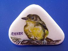 Rockpainting - Fly Eater 0001