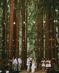 How romantic is this ceremony held in an open forest? We particularly adore the hanging light bulbs that create such an intimate ambiance while the natural beauties make this sacred moment even more lovely and majestic. Perfect choice for a festive or forest wedding! Don't you think so? Double tap and tag a friend who would love this! Photography @dylanmhowell via @thebridestory by weddingdream on Instagram