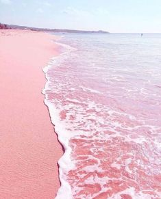Las Coloradas Yucatan, Mexico