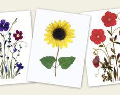 Pressed Flower Cards Set of 6 Notecards by VTPressedFlowers