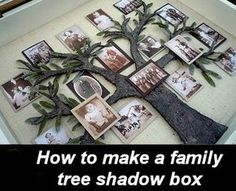 Crafty Sisters: My Family Tree Shadow Box. This DIY family tree takes a little work -- but what a beautiful piece of art! Make A Family Tree, Family Tree With Pictures, Family Trees, Diy Family Tree Project, Family Photos, Family Tree Quilt, Family Tree Picture Frames, Mom Family, Framed Pictures