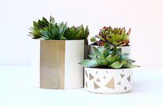 Vasi con Tubi PVC  https://www.passiondiy.com/vasi-tubi-pvc/ I #lavori in #casa sono un'ottima risorsa per il #fai-da-te creativo. I materiali di scarto possono essere riutilizzati per creare nuovi oggetti, come questi graziosi #vasi realizzati con i #tubi #PVC…