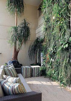 A paisagista Paula Magaldi projetou este jardim vertical, formado por espécies como ripsális, lírio-da-paz, columeia, samambaia e aspargo-samambaia plantadas em vasos de fibra de coco