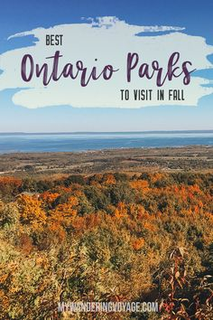 Go for an autumn road trip to see the best Ontario Provincial Parks to visit in the fall including Algonquin Killarney Killbear provincial parks and more. Enjoy the crisp air and the vibrant shades of fall at Ontario Provincial Parks. Alberta Canada, Canada Ontario, Quebec, Ontario Provincial Parks, Canada Winter, Solo Travel, Travel Tips, Travel Abroad, Travel Packing