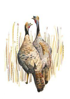 Wild Turkeys in the Straw - Archival print of watercolor, bird art | Etsy