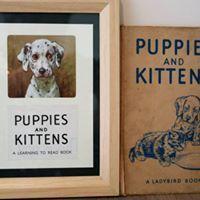Vintage Ladybird Illustration - Puppies and Kittens Ladybird Books, Etsy Seller, Kittens, Puppies, Unique Jewelry, Illustration, Handmade Gifts, Vintage, Cute Kittens