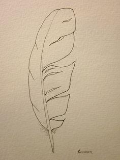 Sea bird feather original ink drawing by AnneLawsonArt on Etsy